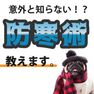 寒さ撃退!冬なんて怖くない!!~頭隠してポッカポカ編♨~